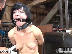 Babe, Facial, Gay twink tied tortured in bdsm bondage clips, Fapli.com