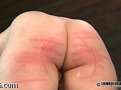 Beauty, Torture gay piss, Fapli.com
