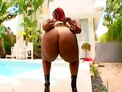 Black, Ass, Big Ass, Voyeur black bbw, Tube8.com